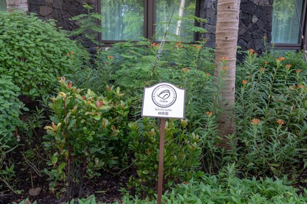 バタフライ・ガーデン