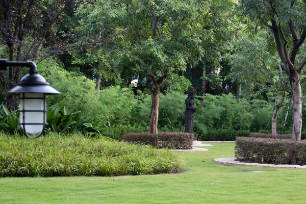 ハティ・ジュニア・ガーデン