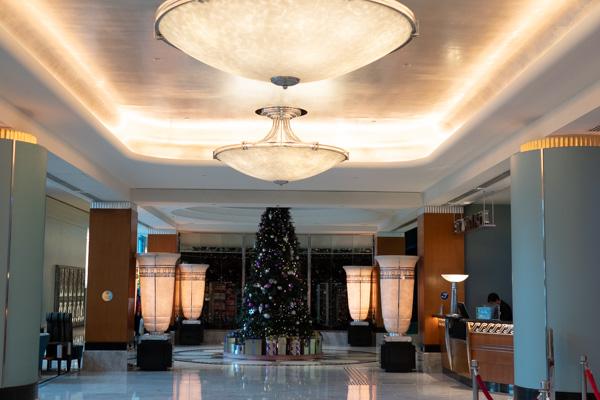 ハリウッド・ホテルのツリー
